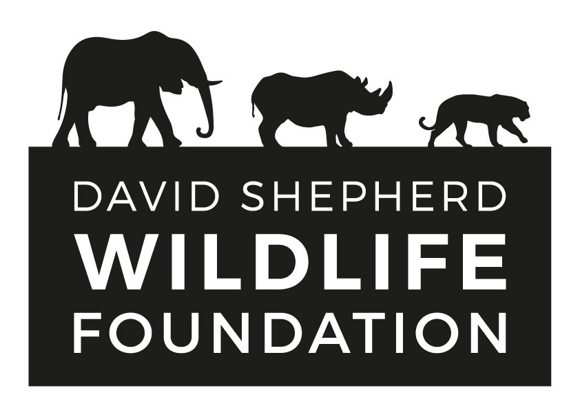 DSWF-logo
