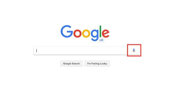 Google voice search option