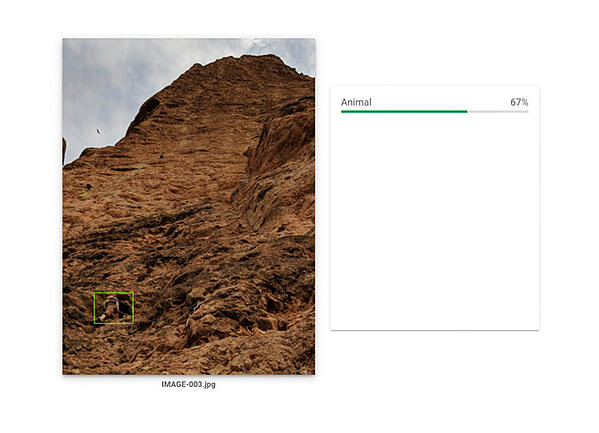 Innovation Visual looking at optimising images tests Google's Computer Vision – Test 4